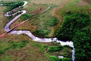 Rio Formoso Parque das Emas