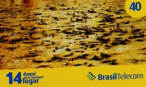 cartao brasil telecom